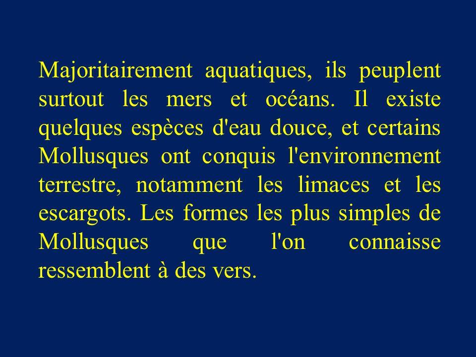 Majoritairement aquatiques, ils peuplent surtout les mers et océans.