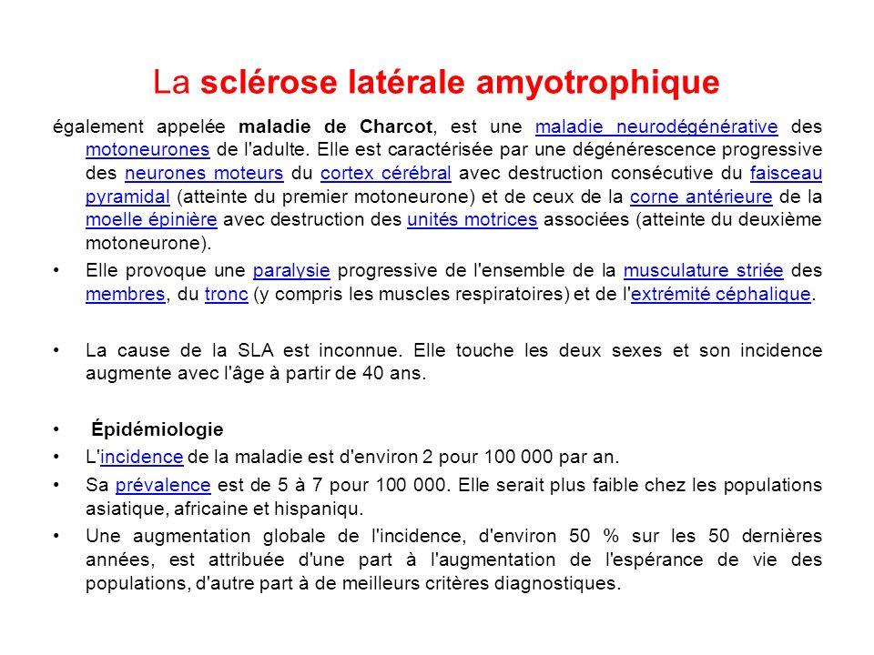 La sclérose latérale amyotrophique également appelée maladie de Charcot, est une maladie neurodégénérative des motoneurones de l adulte.