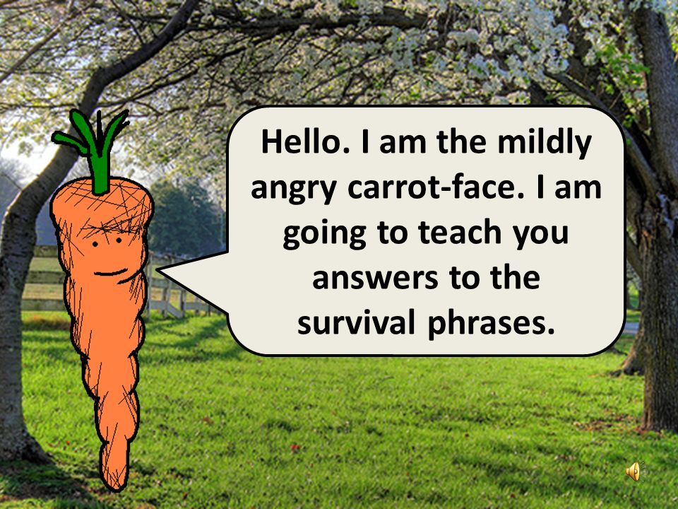 Hello I am the angry potato-head.I have already taught you ten survival phrases.