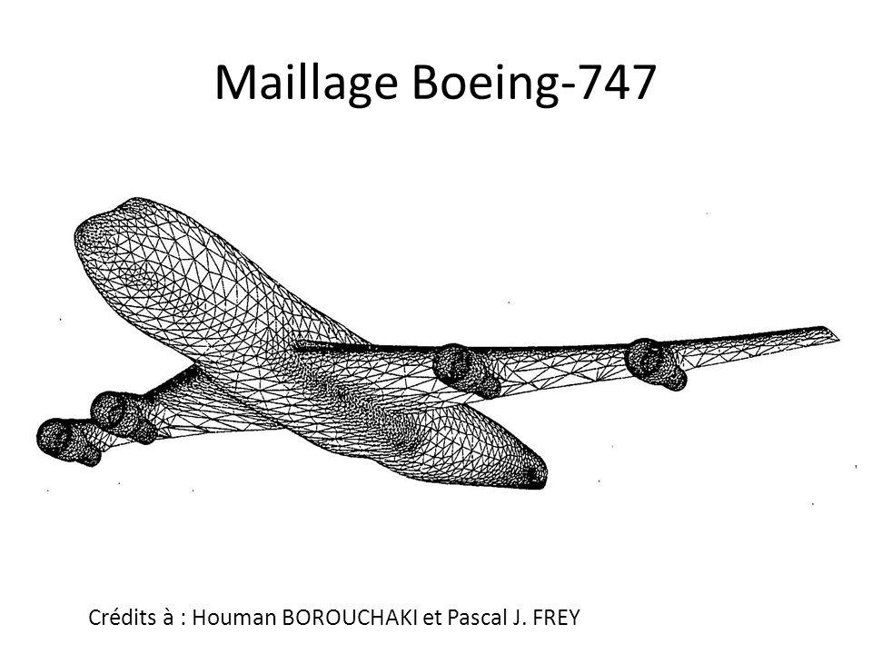 Maillage Boeing-747 Crédits à : Houman BOROUCHAKI et Pascal J. FREY