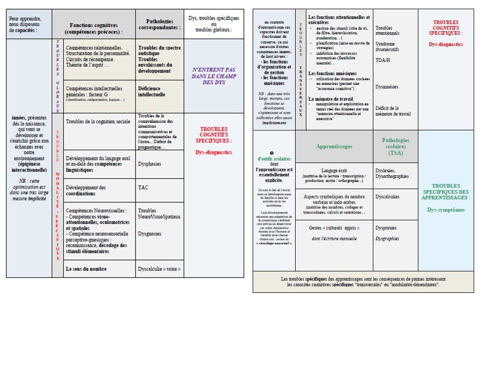 Les pathologies dys : des recettes ou bien se poser les bonnes questions .