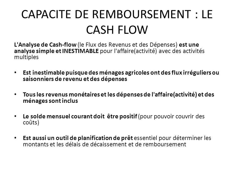 CAPACITE DE REMBOURSEMENT : LE CASH FLOW L Analyse de Cash-flow (le Flux des Revenus et des Dépenses) est une analyse simple et INESTIMABLE pour l affaire(activité) avec des activités multiples Est inestimable puisque des ménages agricoles ont des flux irréguliers ou saisonniers de revenu et des dépenses Tous les revenus monétaires et les dépenses de l affaire(activité) et des ménages sont inclus Le solde mensuel courant doit être positif (pour pouvoir couvrir des coûts) Est aussi un outil de planification de prêt essentiel pour déterminer les montants et les délais de décaissement et de remboursement