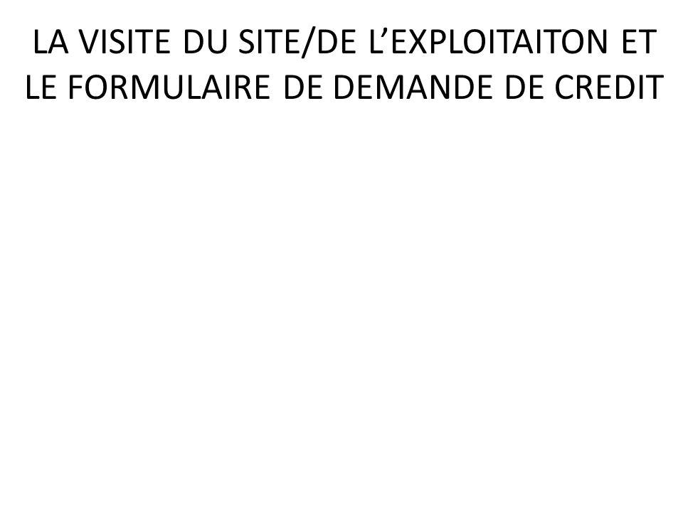 LA VISITE DU SITE/DE LEXPLOITAITON ET LE FORMULAIRE DE DEMANDE DE CREDIT