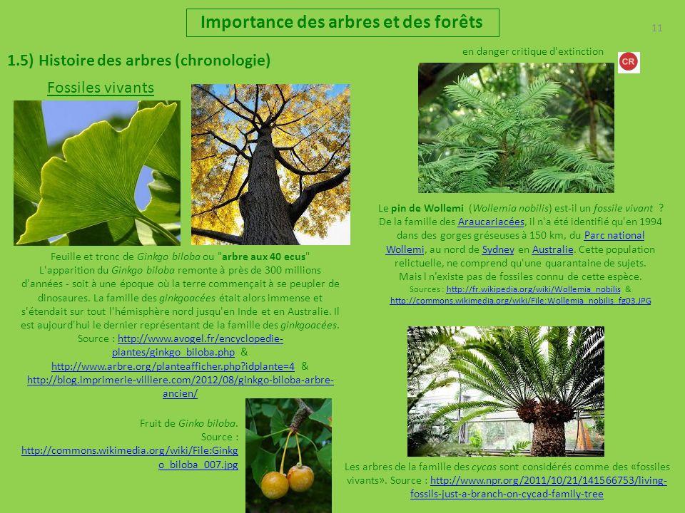 11 Importance des arbres et des forêts 1.5) Histoire des arbres (chronologie) Fossiles vivants Feuille et tronc de Ginkgo biloba ou