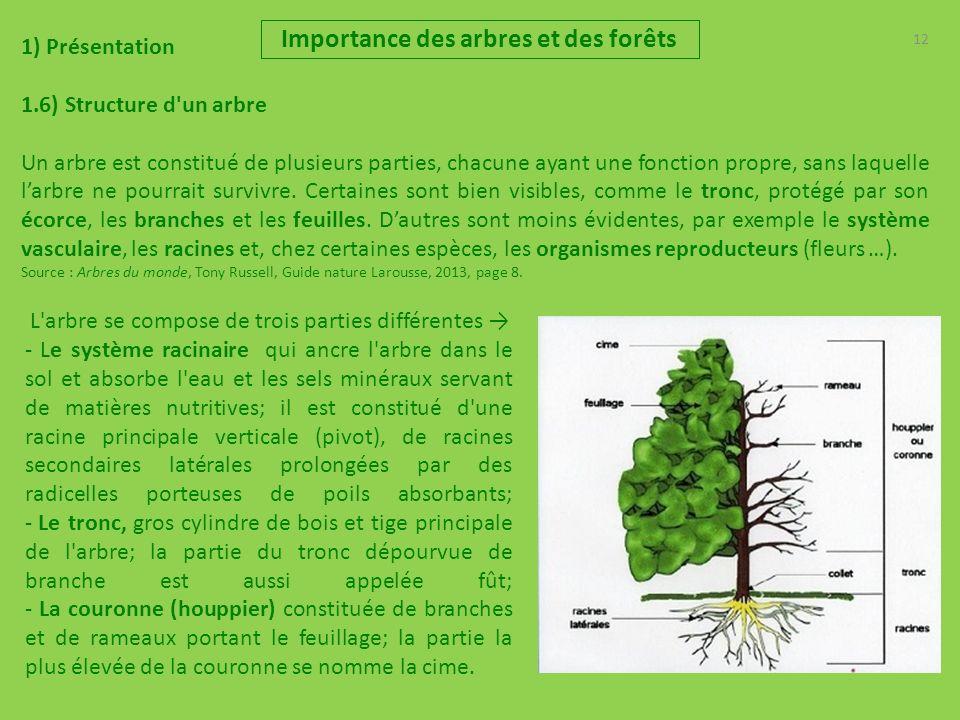 12 Importance des arbres et des forêts 1) Présentation 1.6) Structure d un arbre Un arbre est constitué de plusieurs parties, chacune ayant une fonction propre, sans laquelle larbre ne pourrait survivre.
