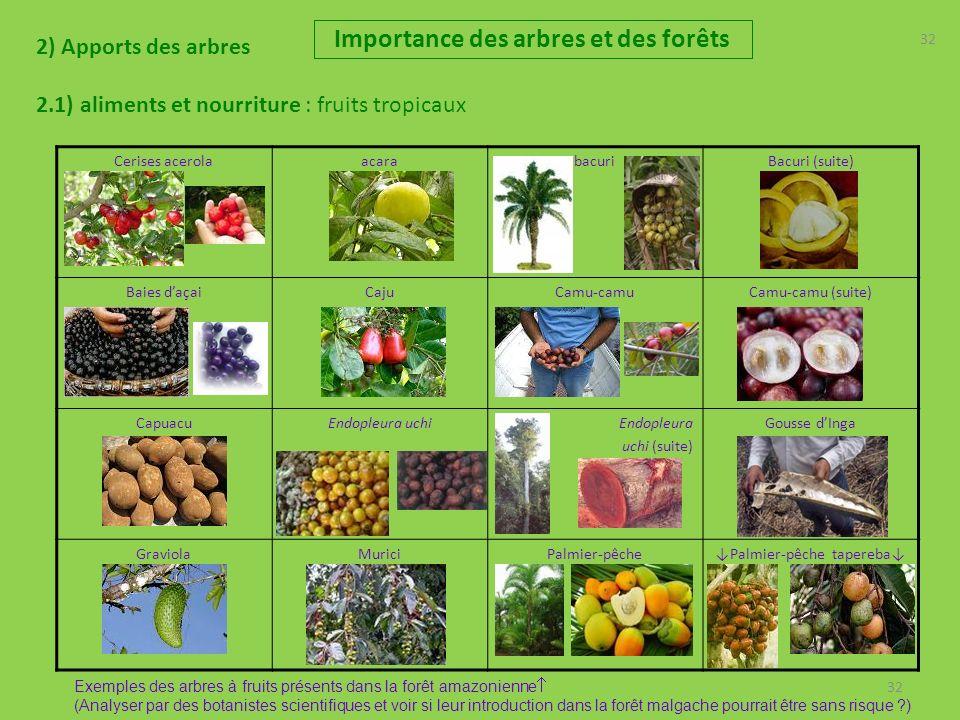 32 2) Apports des arbres 2.1) aliments et nourriture : fruits tropicaux Importance des arbres et des forêts 32 Cerises acerolaacarabacuriBacuri (suite) Baies daçaiCajuCamu-camuCamu-camu (suite) CapuacuEndopleura uchiEndopleura uchi (suite) Gousse dInga GraviolaMuriciPalmier-pêchePalmier-pêche tapereba Exemples des arbres à fruits présents dans la forêt amazonienne (Analyser par des botanistes scientifiques et voir si leur introduction dans la forêt malgache pourrait être sans risque ?)