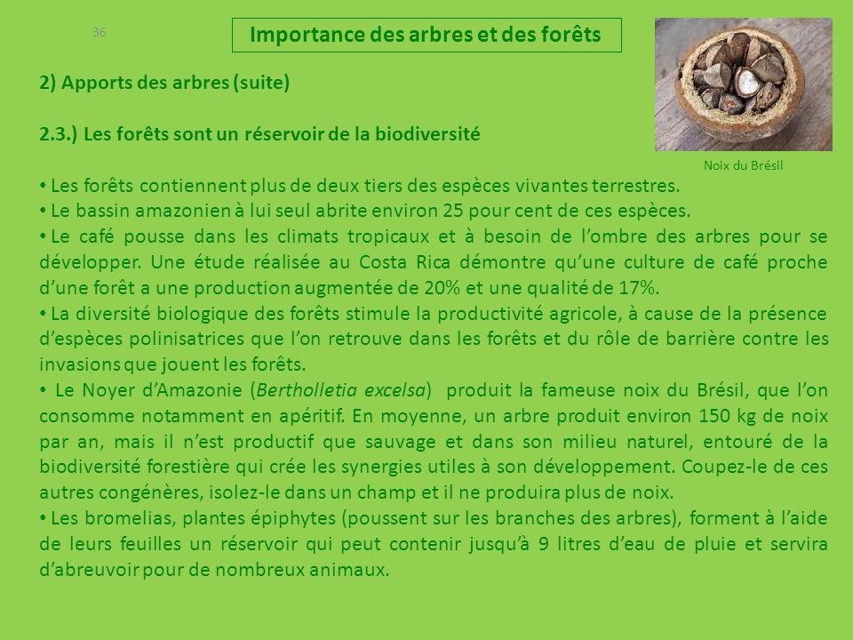 36 2) Apports des arbres (suite) 2.3.) Les forêts sont un réservoir de la biodiversité Les forêts contiennent plus de deux tiers des espèces vivantes