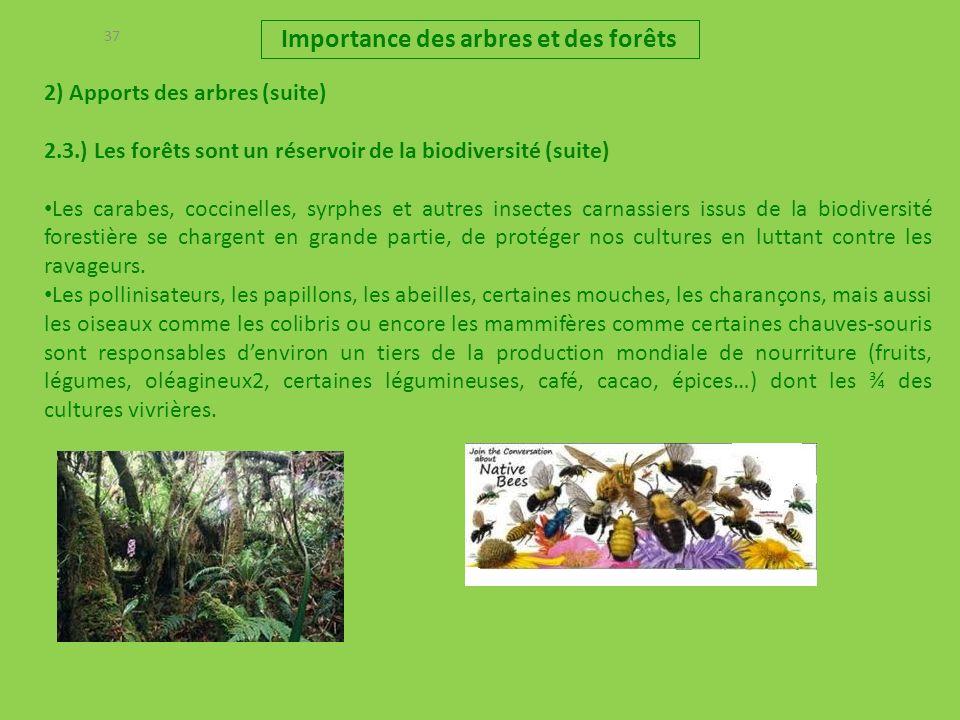 37 2) Apports des arbres (suite) 2.3.) Les forêts sont un réservoir de la biodiversité (suite) Les carabes, coccinelles, syrphes et autres insectes ca