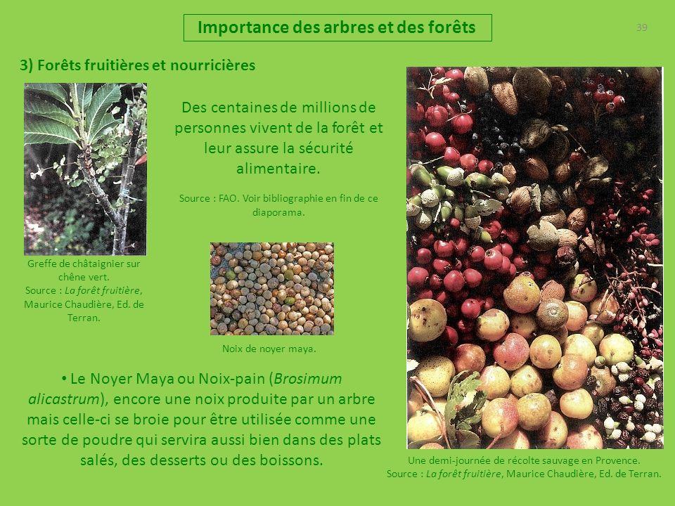 39 Importance des arbres et des forêts 3) Forêts fruitières et nourricières Une demi-journée de récolte sauvage en Provence. Source : La forêt fruitiè