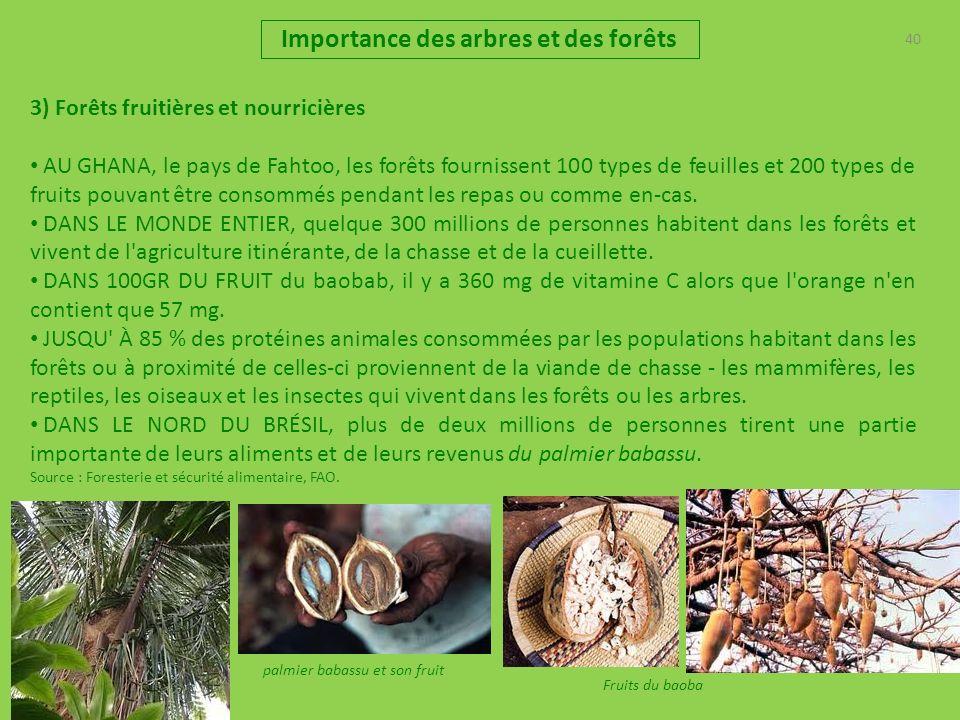 40 Importance des arbres et des forêts 3) Forêts fruitières et nourricières AU GHANA, le pays de Fahtoo, les forêts fournissent 100 types de feuilles et 200 types de fruits pouvant être consommés pendant les repas ou comme en-cas.