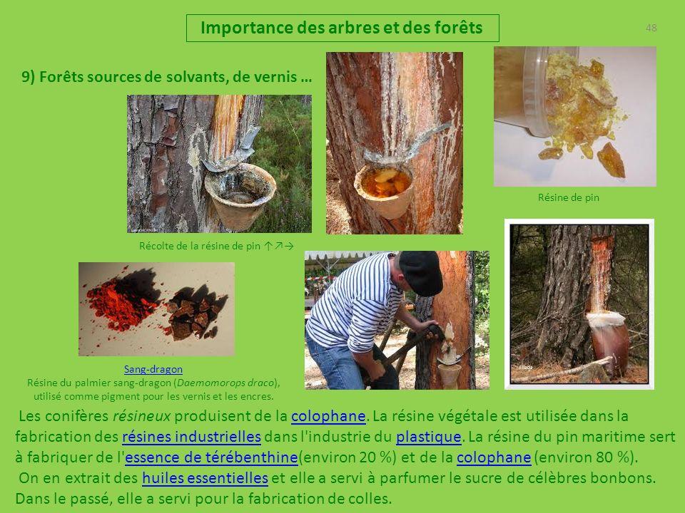 48 Importance des arbres et des forêts 9) Forêts sources de solvants, de vernis … Les conifères résineux produisent de la colophane. La résine végétal