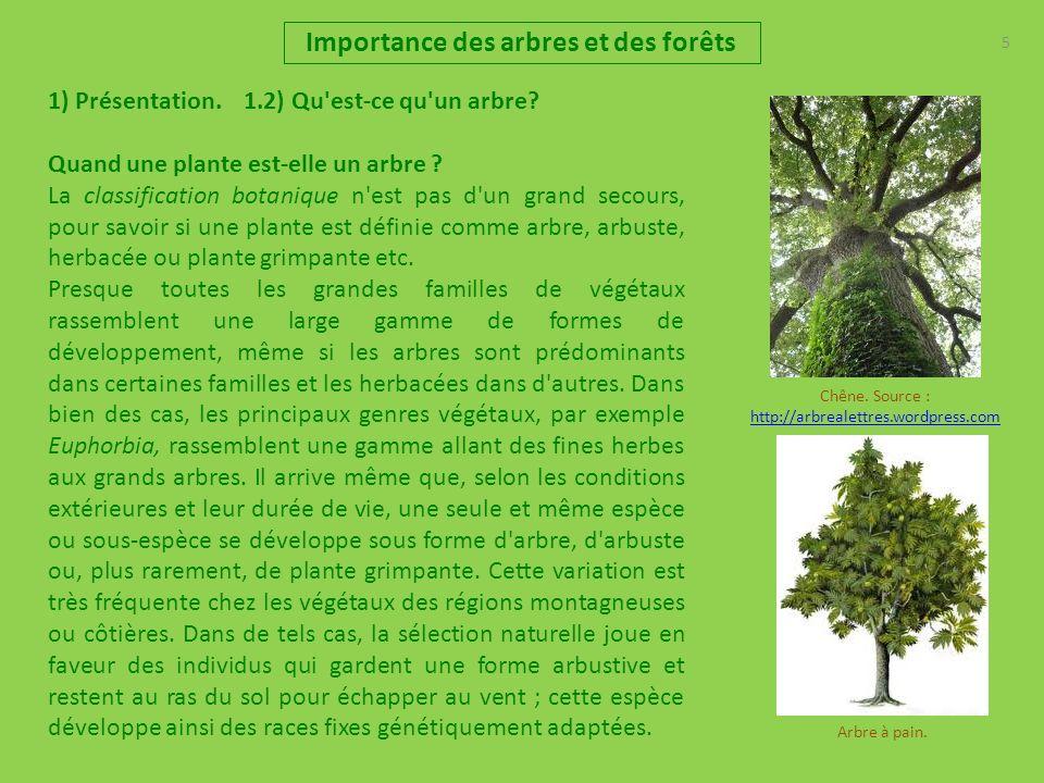 5 Importance des arbres et des forêts 1) Présentation. 1.2) Qu'est-ce qu'un arbre? Quand une plante est-elle un arbre ? La classification botanique n'