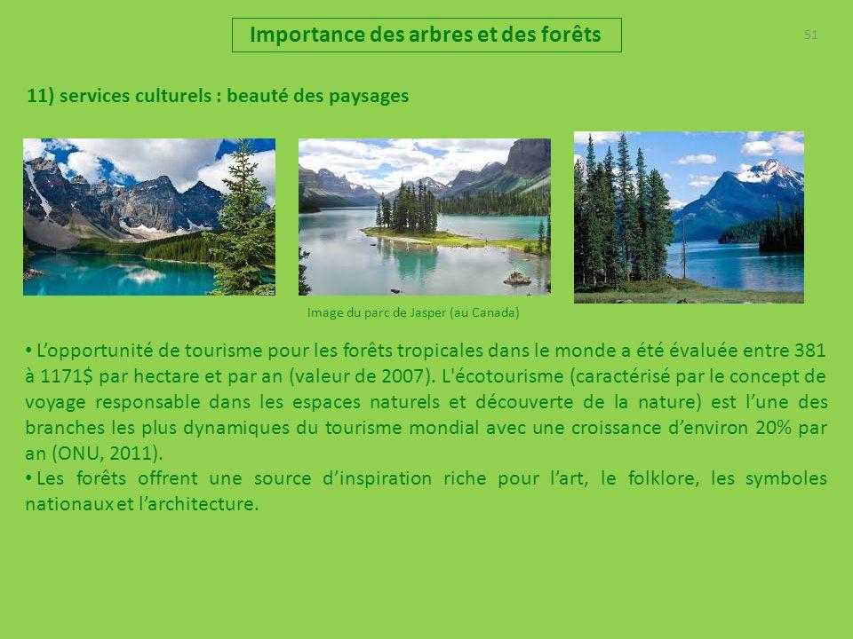 51 Importance des arbres et des forêts 11) services culturels : beauté des paysages Image du parc de Jasper (au Canada) Lopportunité de tourisme pour les forêts tropicales dans le monde a été évaluée entre 381 à 1171$ par hectare et par an (valeur de 2007).