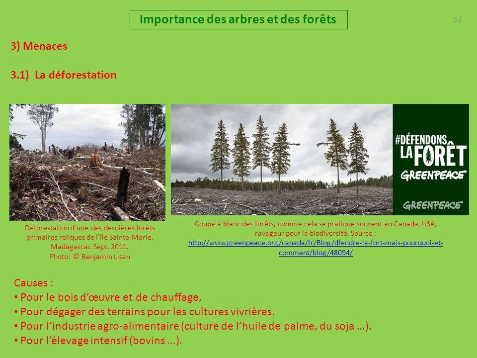 53 3) Menaces 3.1) La déforestation Importance des arbres et des forêts Déforestation dune des dernières forêts primaires reliques de lîle Sainte-Marie, Madagascar.