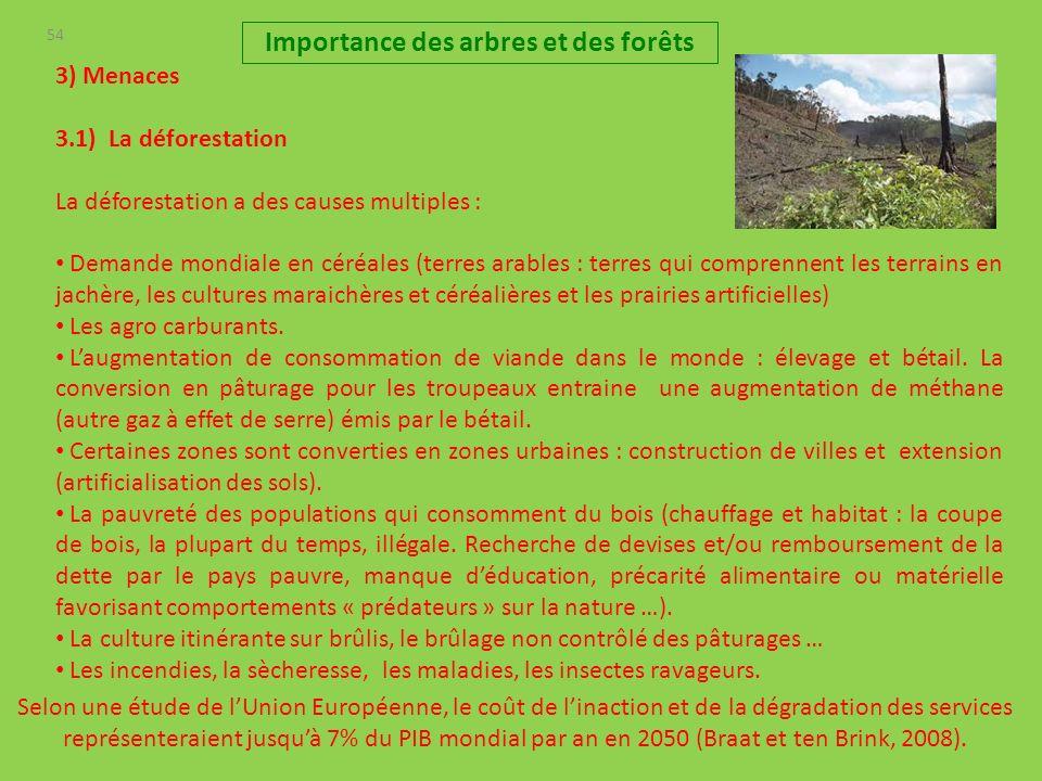 54 3) Menaces 3.1) La déforestation La déforestation a des causes multiples : Demande mondiale en céréales (terres arables : terres qui comprennent les terrains en jachère, les cultures maraichères et céréalières et les prairies artificielles) Les agro carburants.
