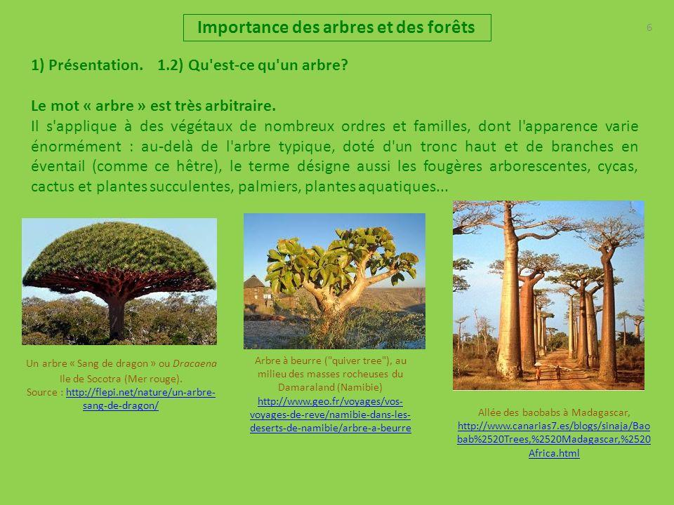 7 Importance des arbres et des forêts 1) Présentation 1.3) Autres définitions : Arbre : 1) espèces de plantes ayant toutes en commun une tige ligneuse, dressée, ramifiée en branche, qui sépaissit et croit dannée en année et qui supporte les branches.