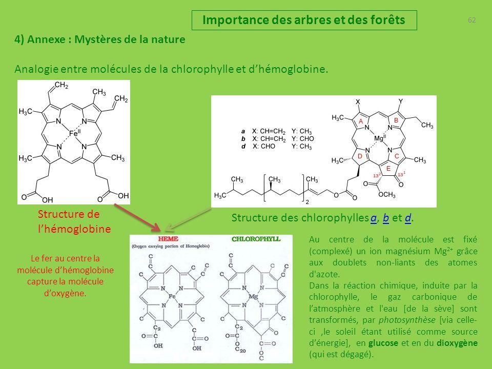62 Importance des arbres et des forêts 4) Annexe : Mystères de la nature Analogie entre molécules de la chlorophylle et dhémoglobine.