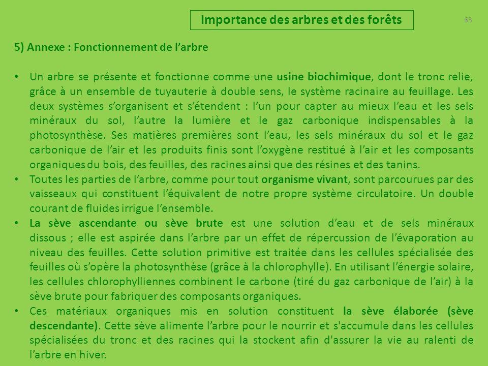 63 Importance des arbres et des forêts 5) Annexe : Fonctionnement de larbre Un arbre se présente et fonctionne comme une usine biochimique, dont le tr