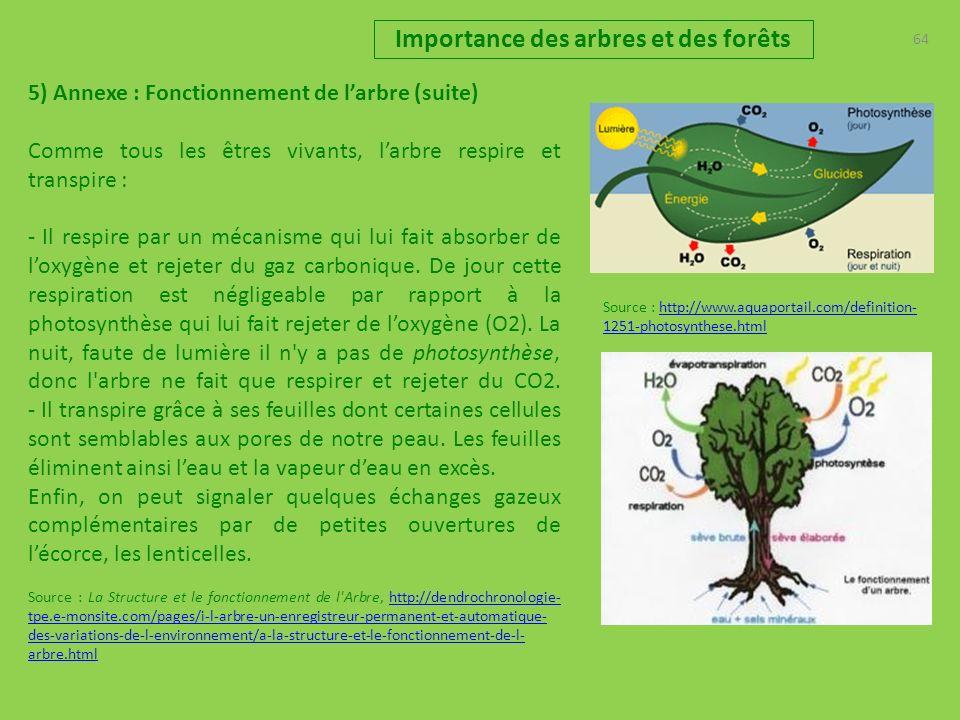 64 Importance des arbres et des forêts 5) Annexe : Fonctionnement de larbre (suite) Comme tous les êtres vivants, larbre respire et transpire : - Il respire par un mécanisme qui lui fait absorber de loxygène et rejeter du gaz carbonique.
