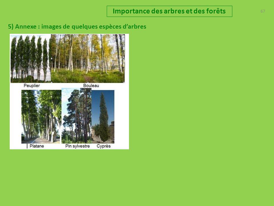 67 Importance des arbres et des forêts 5) Annexe : images de quelques espèces darbres