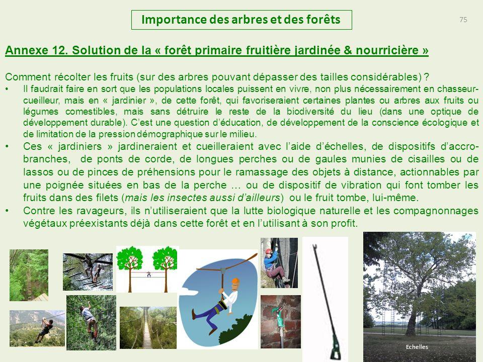 75 Importance des arbres et des forêts 75 Annexe 12. Solution de la « forêt primaire fruitière jardinée & nourricière » Comment récolter les fruits (s