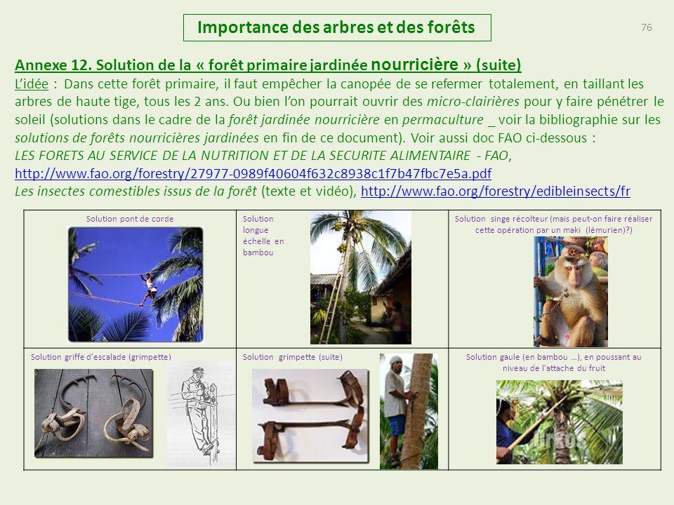 76 Importance des arbres et des forêts Annexe 12. Solution de la « forêt primaire jardinée nourricière » (suite) Lidée : Dans cette forêt primaire, il