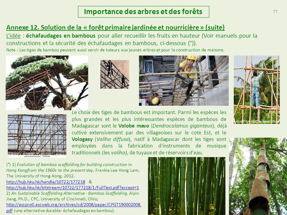 77 Importance des arbres et des forêts Annexe 12. Solution de la « forêt primaire jardinée et nourricière » (suite) Lidée : échafaudages en bambous po