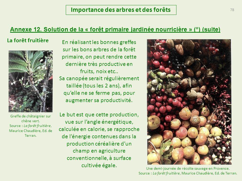 78 Importance des arbres et des forêts Annexe 12. Solution de la « forêt primaire jardinée nourricière » (°) (suite) La forêt fruitière Une demi-journ