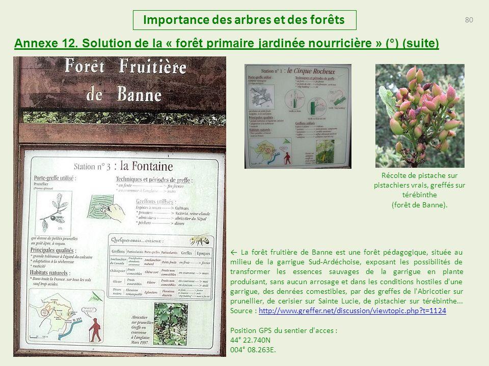 80 Importance des arbres et des forêts Annexe 12. Solution de la « forêt primaire jardinée nourricière » (°) (suite) La forêt fruitière de Banne est u