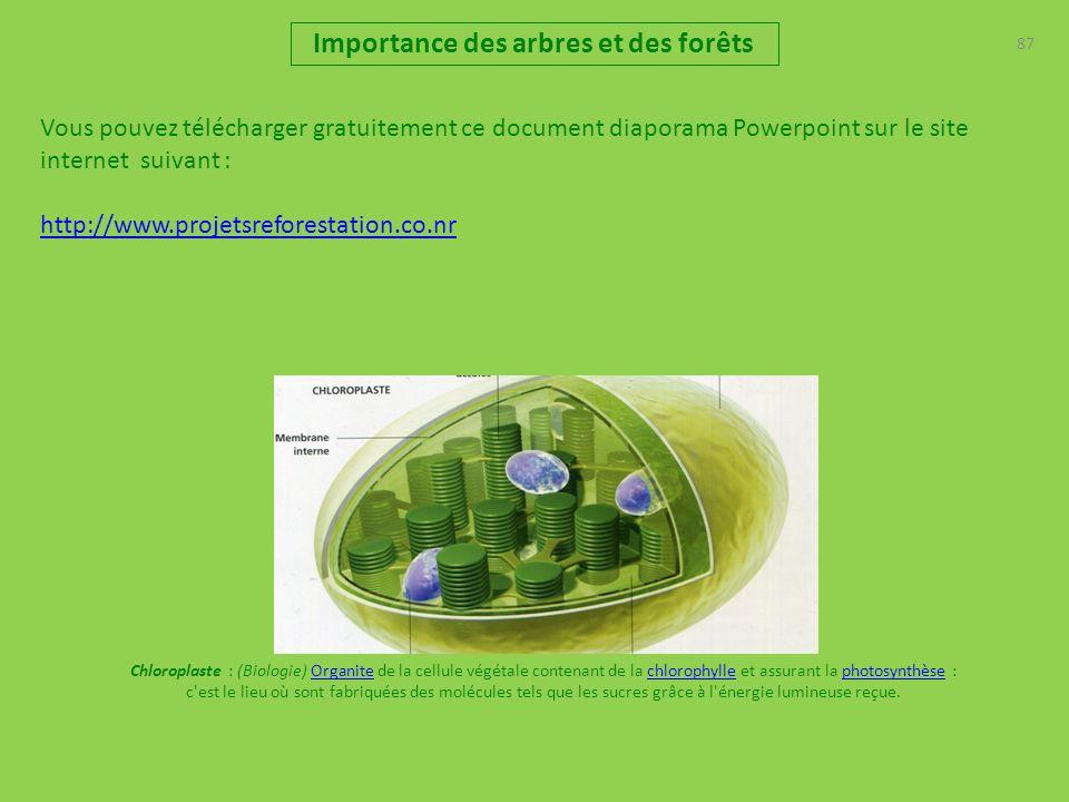 Vous pouvez télécharger gratuitement ce document diaporama Powerpoint sur le site internet suivant : http://www.projetsreforestation.co.nr 87 Importance des arbres et des forêts Chloroplaste : (Biologie) Organite de la cellule végétale contenant de la chlorophylle et assurant la photosynthèse : c est le lieu où sont fabriquées des molécules tels que les sucres grâce à l énergie lumineuse reçue.Organitechlorophyllephotosynthèse