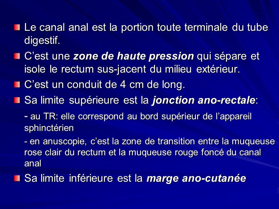 Le canal anal est la portion toute terminale du tube digestif.