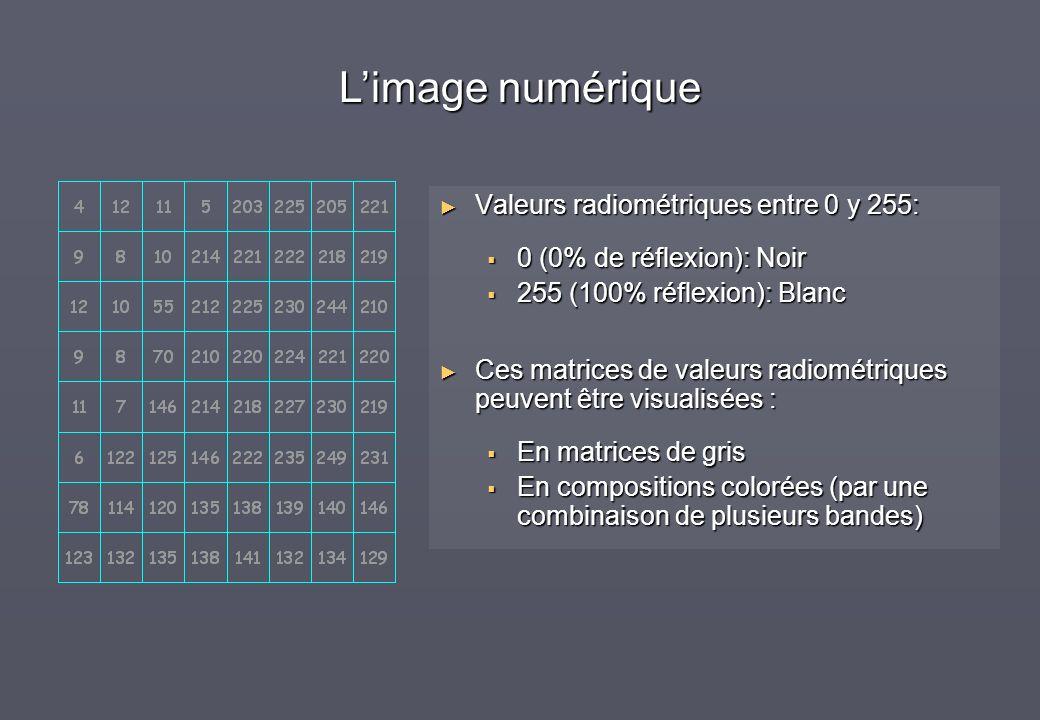 Valeurs radiométriques entre 0 y 255: 0 (0% de réflexion): Noir 255 (100% réflexion): Blanc Ces matrices de valeurs radiométriques peuvent être visual