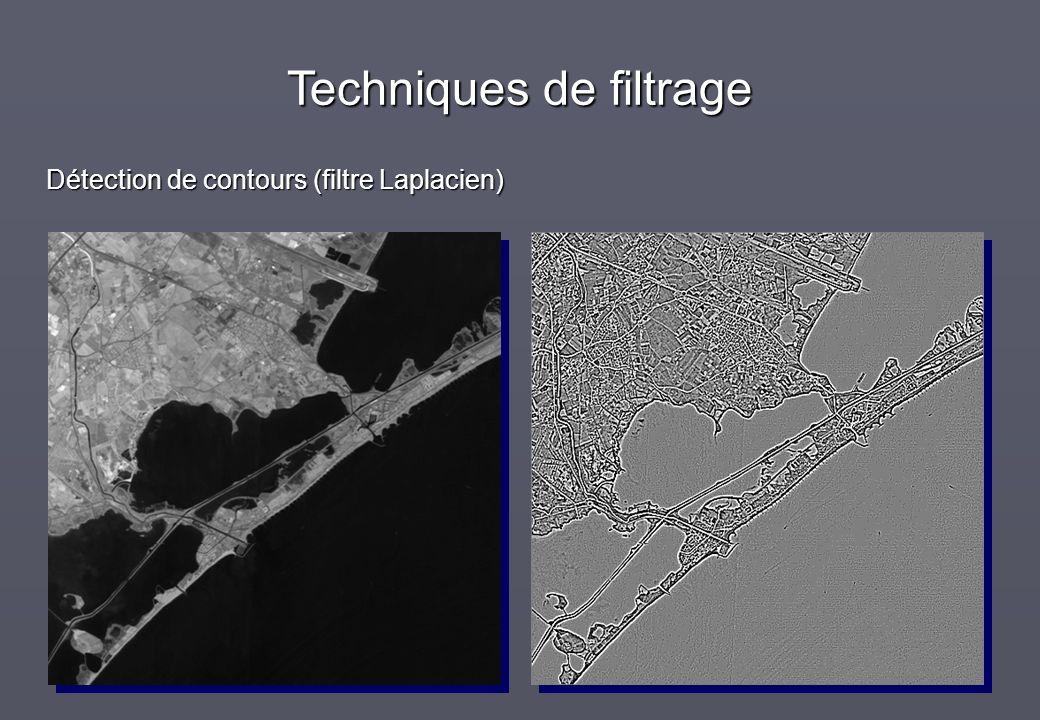 Techniques de filtrage Détection de contours (filtre Laplacien)