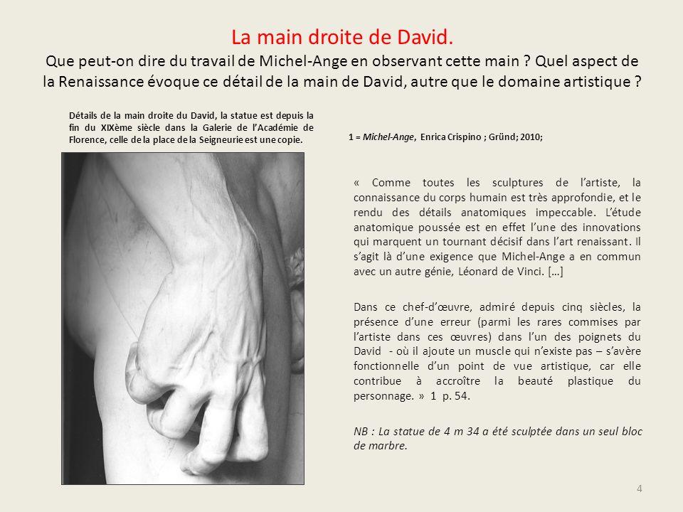 La main droite de David. Que peut-on dire du travail de Michel-Ange en observant cette main ? Quel aspect de la Renaissance évoque ce détail de la mai