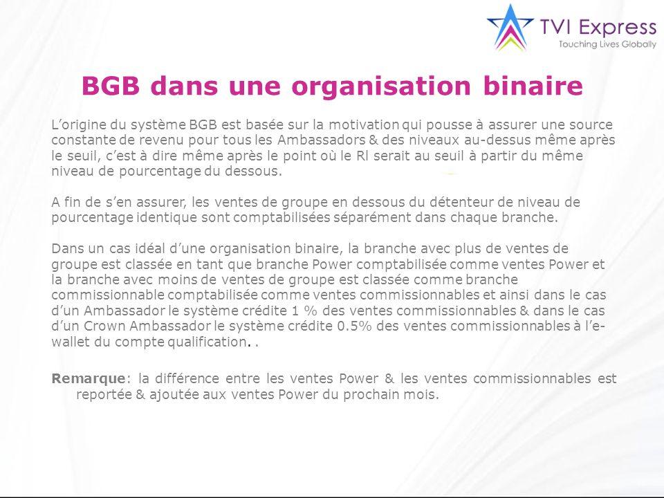 3 BGB dans une organisation binaire Lorigine du système BGB est basée sur la motivation qui pousse à assurer une source constante de revenu pour tous