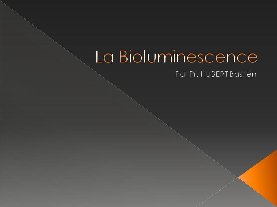La bioluminescence est la production et lémission de lumière par un organisme vivant, résultant dune réaction chimique au cours de la quelle lénergie produite est transformée en énergie lumineuse.