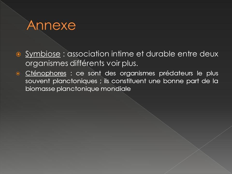 Symbiose : association intime et durable entre deux organismes différents voir plus.
