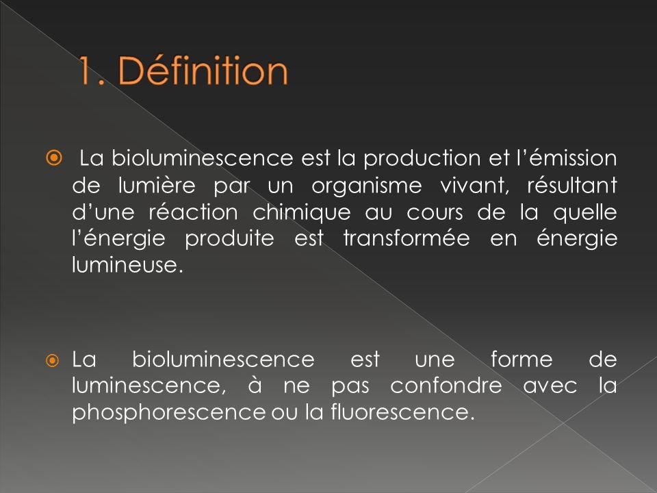 La bioluminescence peut être générée par des organismes symbiotiques hébergés par un hôte plus grand.
