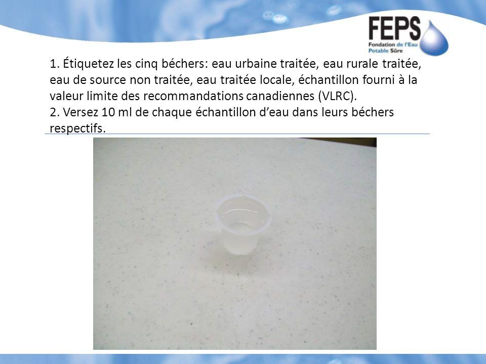 1. Étiquetez les cinq béchers: eau urbaine traitée, eau rurale traitée, eau de source non traitée, eau traitée locale, échantillon fourni à la valeur