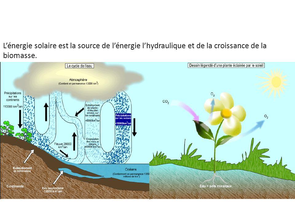 Lénergie solaire est la source de lénergie lhydraulique et de la croissance de la biomasse.
