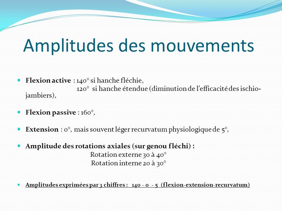 Amplitudes des mouvements Flexion active : 140° si hanche fléchie, 120° si hanche étendue (diminution de lefficacité des ischio- jambiers), Flexion pa