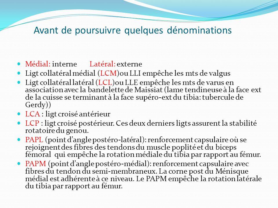 Avant de poursuivre quelques dénominations Médial: interne Latéral: externe Ligt collatéral médial (LCM)ou LLI empêche les mts de valgus Ligt collatér