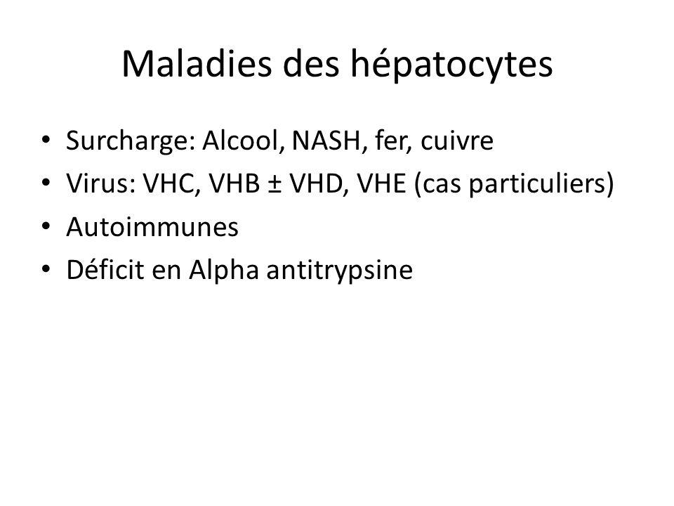 Maladies des hépatocytes Surcharge: Alcool, NASH, fer, cuivre Virus: VHC, VHB ± VHD, VHE (cas particuliers) Autoimmunes Déficit en Alpha antitrypsine