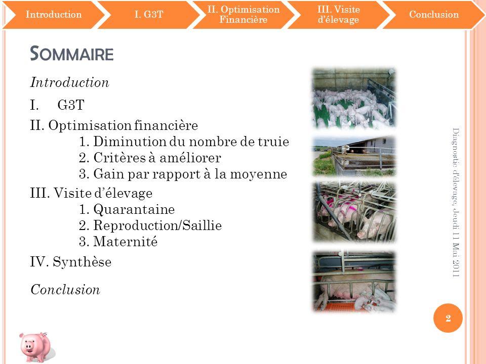 S OMMAIRE IntroductionI. G3T II. Optimisation Financière III. Visite délevage Conclusion 2 Diagnostic d'élevage, Jeudi 11 Mai 2011 Introduction I.G3T