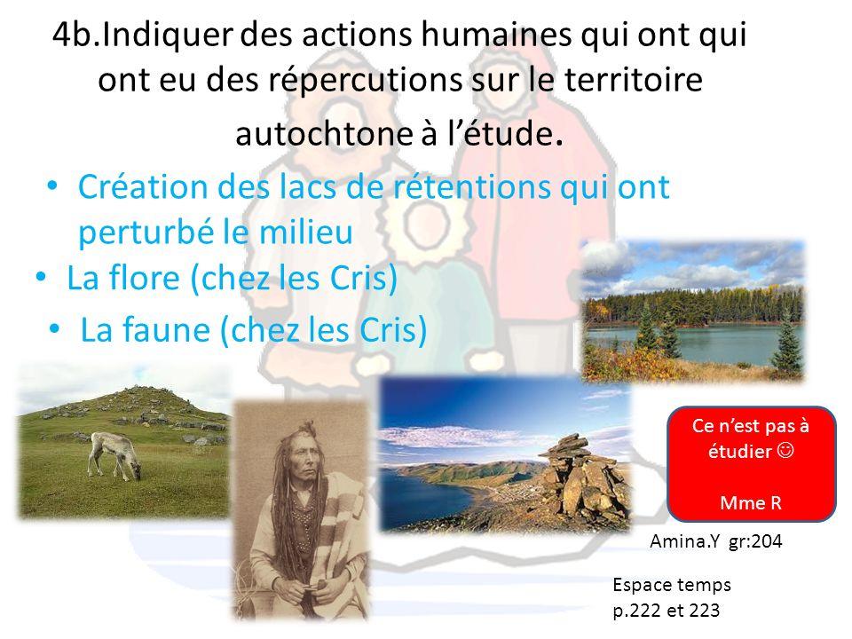 4b.Indiquer des actions humaines qui ont qui ont eu des répercutions sur le territoire autochtone à létude. Création des lacs de rétentions qui ont pe