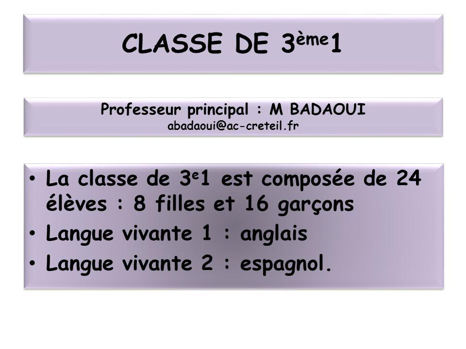 CLASSE DE 3 ème 1 La classe de 3 e 1 est composée de 24 élèves : 8 filles et 16 garçons Langue vivante 1 : anglais Langue vivante 2 : espagnol. La cla