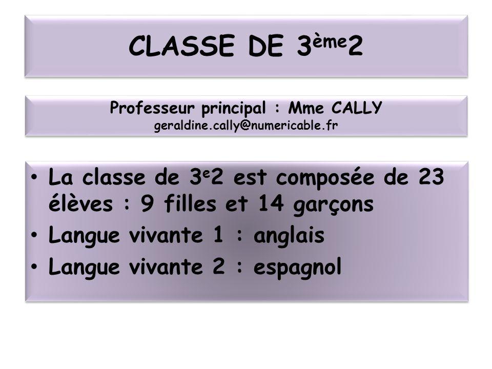 CLASSE DE 3 ème 2 La classe de 3 e 2 est composée de 23 élèves : 9 filles et 14 garçons Langue vivante 1 : anglais Langue vivante 2 : espagnol La clas