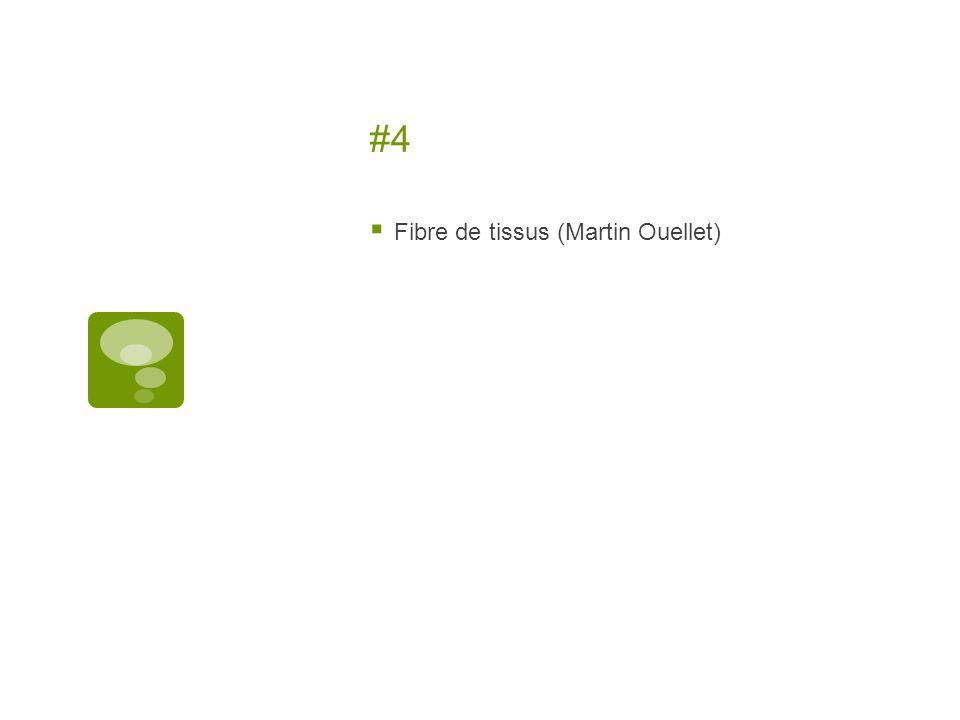 #4 Fibre de tissus (Martin Ouellet)