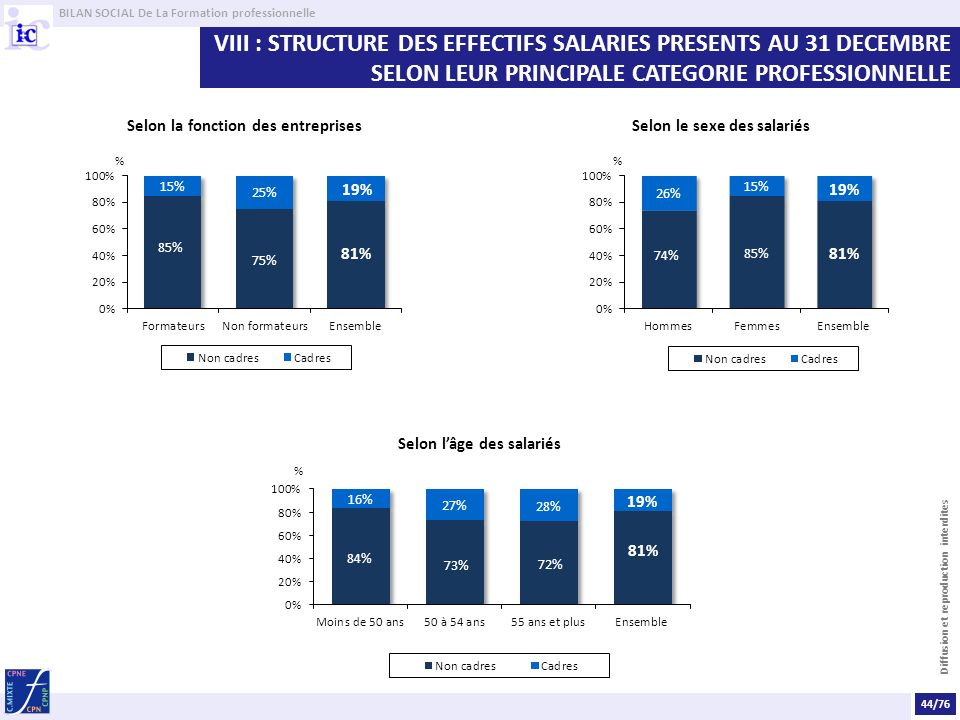 BILAN SOCIAL De La Formation professionnelle Diffusion et reproduction interdites VIII : STRUCTURE DES EFFECTIFS SALARIES PRESENTS AU 31 DECEMBRE SELO