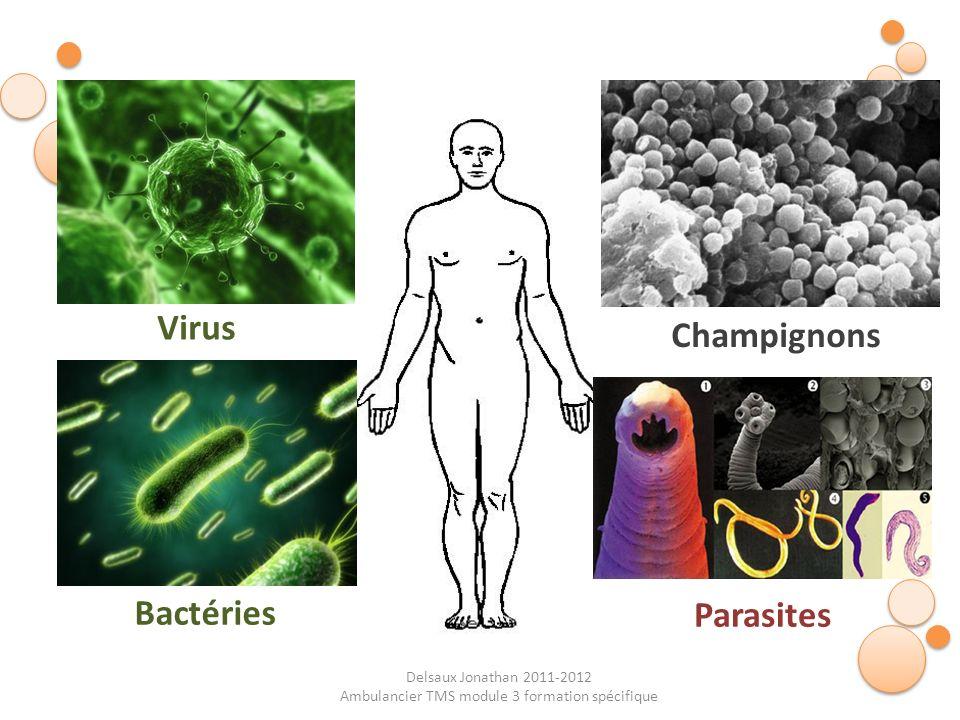 Delsaux Jonathan 2011-2012 Ambulancier TMS module 3 formation spécifique Virus Bactéries Champignons Parasites